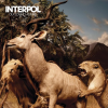 Interpol - Our Love to Admire (2007) 320kbps