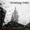 Counting Crows - Saturday Nights & Sunday Morning (2008) 320kbps
