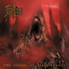 Death - The Sound of Perseverance (1998) 320kbps